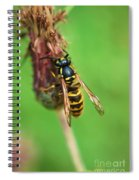 Wasp On Plant Spiral Notebook