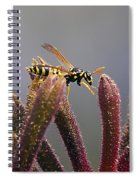 Waspage In The Kangaroo Paw Spiral Notebook