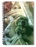 Watcher From Above Spiral Notebook