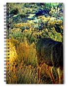 Watcher Spiral Notebook