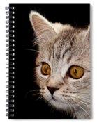 Watching You Spiral Notebook