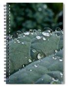 Water Beads Spiral Notebook