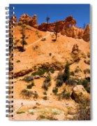 Water Canyon Dragon Spiral Notebook