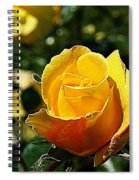 Water Color Paper Rose Spiral Notebook