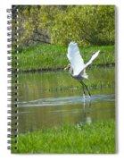 Water Dancer Spiral Notebook