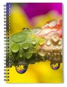 Water Drops On A Budding Flower Spiral Notebook