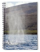 Water From A Whale Blowhole Spiral Notebook