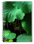 Water Lilies Of Green Spiral Notebook