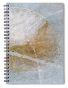 Water Lily Leaf In Ice, Boggy Lake Spiral Notebook