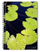 Water Lily Pads And Bloom Spiral Notebook