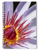 Water Lily Soaking Up The Sun Light Spiral Notebook