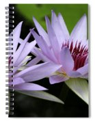 Water Lily Twins Spiral Notebook