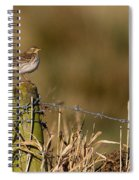 Water Pipit On Post Spiral Notebook