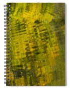 Water Reflection Abstract Autumn 1 D Spiral Notebook