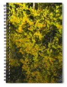 Water Reflection Abstract Autumn 1 F Spiral Notebook