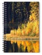 Water Reflection At Jade Lake In Northern Saskatchewan Spiral Notebook