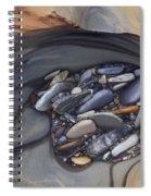 Water Sculpted Rock Bed, Kicking Horse Spiral Notebook