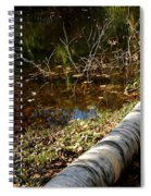 Water Seeing Spiral Notebook