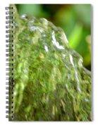 Water Shell Spiral Notebook