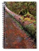 Water Trail Spiral Notebook