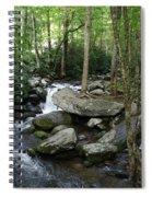 Waterfall In Stream Spiral Notebook