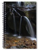 Waterfall On Emory Gap Branch Spiral Notebook