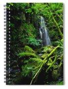 Waterfall, Sloughan Glen, Co Tyrone Spiral Notebook