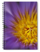 Waterlily Zoom Spiral Notebook