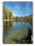 Waterlogged Spiral Notebook