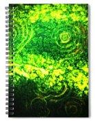 Watermelon Eyes Spiral Notebook