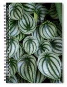 Watermelon Leaves 2 Spiral Notebook