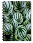 Watermelon Leaves Spiral Notebook