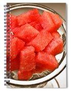 Watermelon Parfait 2 Spiral Notebook