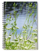 Water's Edge Spiral Notebook