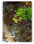 Watershed Creek Spiral Notebook