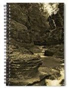 Watkins Glen In Orotone Spiral Notebook