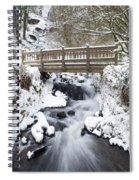 Waukeena Creek, Columbia River Gorge Spiral Notebook
