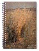 Waves Of Grass Spiral Notebook