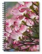 Waves Of Pink Light Spiral Notebook