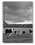 Weather Talk Monochrome Spiral Notebook
