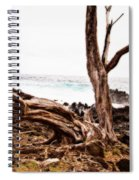 Weathered Beauty Spiral Notebook