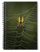 Weave Master Spiral Notebook