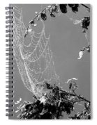 Web In The Rain B-w Spiral Notebook