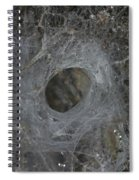 Web Of A Funnel-web Spider Spiral Notebook