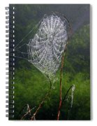Web Over Foggy Lake Spiral Notebook