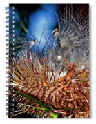 Weed Orgy Buzzed Spiral Notebook