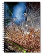 Weed Orgy Spiral Notebook