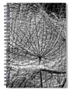 Weed Wandering Monochrome Spiral Notebook