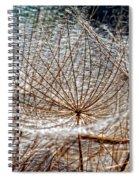 Weed Wandering Spiral Notebook