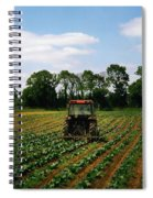 Weeding A Cabbage Field, Ireland Spiral Notebook